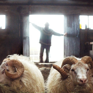 Nordic Showcase presents 60 films at the 39th Mostra
